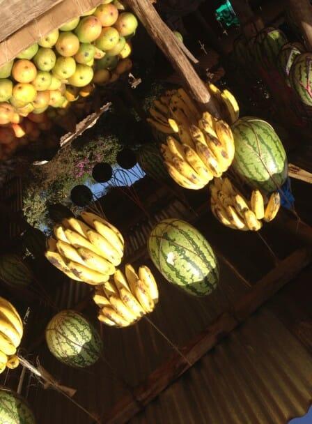 hanging fruit